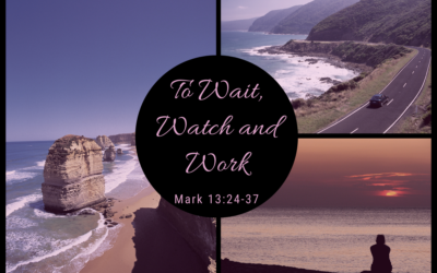 To Wait, Watch and Work 11.29.20