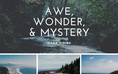 Awe, Wonder, and Mystery 2.14.21