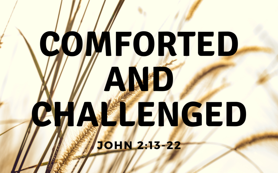 Comforted and Challenged 3.7.21