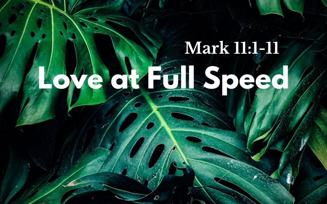 Love at Full Speed 3.28.21